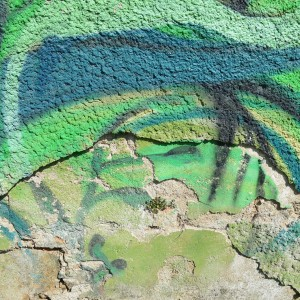 Foto mural O carballo, 10 de 17