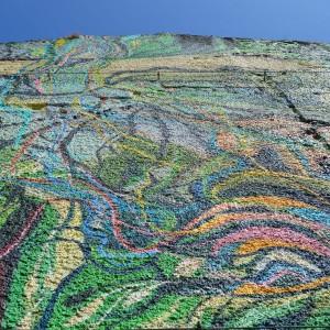 Foto mural O carballo, 11 de 17