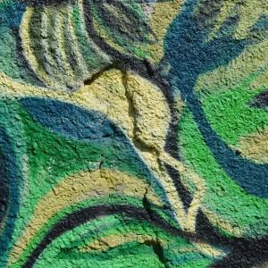 Foto mural O carballo, 12 de 17