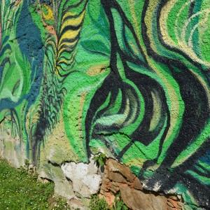 Foto mural O carballo, 13 de 17