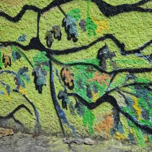 Foto mural O carballo, 14 de 17