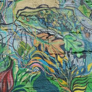 Foto mural O carballo, 15 de 17