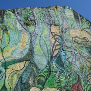 Foto mural O carballo, 16 de 17