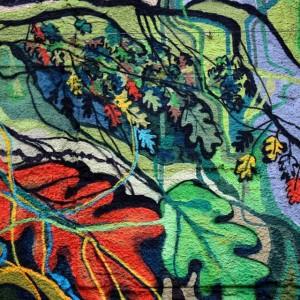 Foto mural O carballo, 1 de 17