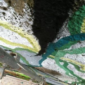 Foto mural O carballo, 5 de 17