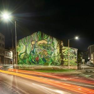Foto mural O carballo, 7 de 17