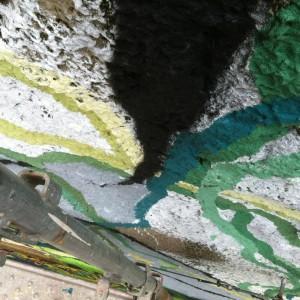 Foto mural O carballo, 8 de 17