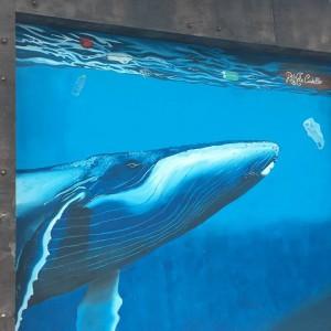 Foto mural Balea 6 de 9