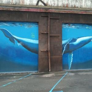 Foto mural Balea 7 de 9