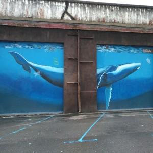 Foto mural Balea 8 de 9