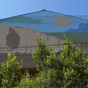 Foto mural Caracola do soño maneiro, 2 de 7