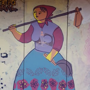 Foto mural MasterClass Caseta Rego da Balsa, 9 de 18