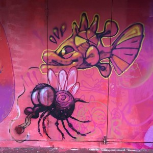 Foto mural MasterClass Caseta Rego da Balsa, 14 de 18