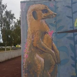 Foto mural MasterClass Caseta Rego da Balsa, 8 de 18