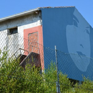 Foto mural Rosalia, 9 de 9