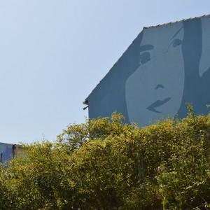 Foto mural Rosalia, 3 de 9