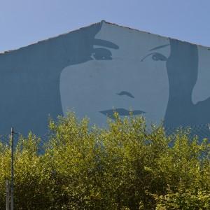 Foto mural Rosalia, 5 de 9