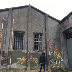 Foto mural sen título 9 de 9