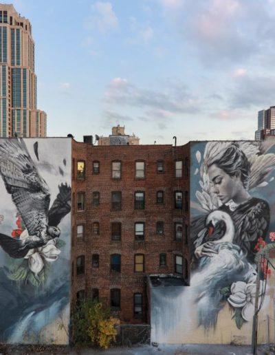 Lula Goce - Nueva York